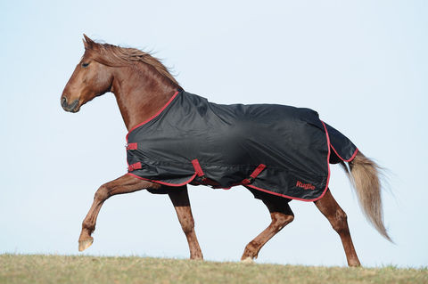 RugBe Zero.1 Outdoor-Pferdedecke für das ganze Jahr