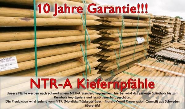 NTR-A Kiefernpfähle